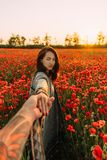 Woman leading a man in poppy meadow. royalty free stock image