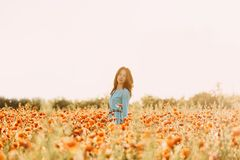 Beautiful woman walking in flower field. Beautiful brunette young woman with long hair walking in red poppy flower field on sunny summer day royalty free stock photos