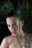 Beautiful brunette young woman with peacock style Stock Image