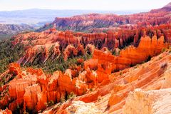 Beautiful Bryce Canyon National Park Royalty Free Stock Images