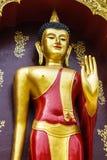 Beautiful Buddha Stand Stock Image