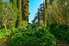 Beautiful building coverd with ivy. In the Santa Clotilde Gardens in Lloret de Mar royalty free stock image