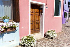 Beautiful building with petunia flowers in Burano island (Venice, Italy) Royalty Free Stock Photo