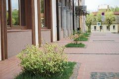 beautiful building in Ryazan, Russia royalty free stock photos