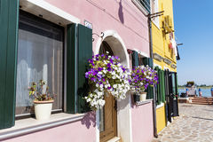 Beautiful buildings with hanging flowers in Burano island (Venice, Italy) Stock Photography