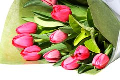 Beautiful bunch of pink tulips Royalty Free Stock Image