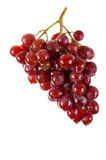 Beautiful bunch of red grapes Royalty Free Stock Images