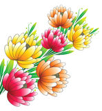Beautiful bunch of vector flowers Royalty Free Stock Photography