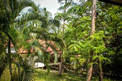Beautiful bungalow resort in jungle, Koh Samui, Stock Photography