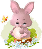 Beautiful bunny on the field. Beautiful bunny with egg on a field of flowers Royalty Free Stock Image