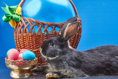 Beautiful bunny near a basket with a balloon and a vase with Easter eggs Royalty Free Stock Photography