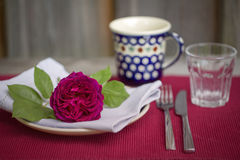 Beautiful burgundy rose on a table setting Royalty Free Stock Images