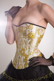 Beautiful burlesque girl in golden corset Royalty Free Stock Images
