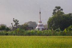 Beautiful burmese buddist stupa on the rice field in Hpa-An. Myanmar stock images