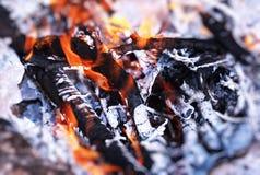 Beautiful burning bonfire Royalty Free Stock Photos