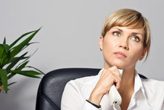 Beautiful Business Lady Stock Photos