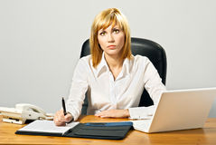 Beautiful Business Lady with Laptop Stock Image