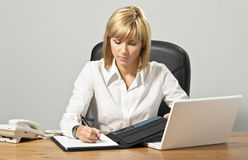 Beautiful Business Lady with Laptop Stock Images