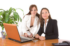 Beautiful business women Stock Image