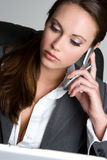 Beautiful Businesswoman Stock Images