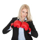 Beautiful businesswomen posing with boxing gloves Stock Image