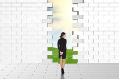 Beautiful businesswomen watching dilapidated brick wall Royalty Free Stock Images