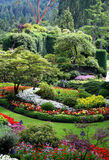 Beautiful Butchart Gardens, Vancouver Island, Cana. Close to a million people a year visit Butchart Gardens, one of the most beautiful gardens in the world Royalty Free Stock Photo