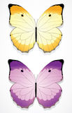 Beautiful Butterflies Royalty Free Stock Images