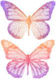 Beautiful butterflies Royalty Free Stock Photo