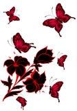 Beautiful butterflies Stock Image
