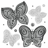 Beautiful butterflies Stock Images
