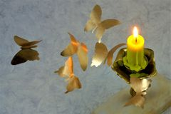 Beautiful butterflies with Golden wings fly on a hot candle fire royalty free stock photos