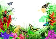 Beautiful butterflies with tropical flowers on colorful drops of paint. vector illustration