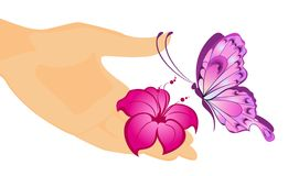 The beautiful butterfly. Sits down on a female hand Stock Illustration