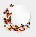 Beautiful butterfly background and gift card. Royalty Free Stock Photos