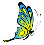 Beautiful butterfly for a design Royalty Free Stock Image