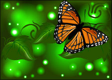 Beautiful butterfly on a glowing  background Stock Image