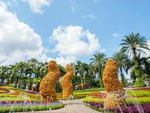 Beautiful Butterfly Hill at Nong Nooch Tropical Botanical Garden Royalty Free Stock Photography