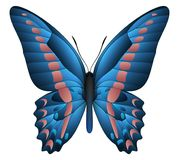 Beautiful butterfly isolated on a white background. Graphium sarpedon or blue triangle butterfly. 3D illustration royalty free illustration