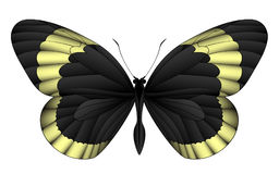 Beautiful butterfly isolated on a white background Royalty Free Stock Photos