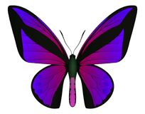Beautiful butterfly isolated on a white background. Vector 3D illustration royalty free illustration