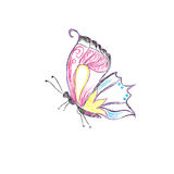 Beautiful, butterfly, vector, set, sketch style Royalty Free Stock Image