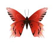 beautiful butterfly. Stock Photos