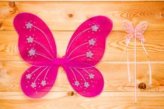 Beautiful butterfly wings costume for a carnival for a girl Stock Photos