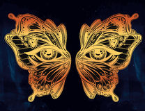 Beautiful butterfly wings mask with eyes. Royalty Free Stock Images