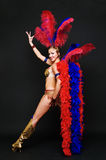 Beautiful cabaret dancer posing Royalty Free Stock Photography