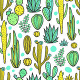 Beautiful Cactuses Abstract Natural Seamless Pattern Stock Image