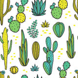 Beautiful Cactuses Abstract Natural Seamless Pattern Stock Images