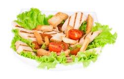Beautiful caesar salad. Royalty Free Stock Photography