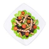 Beautiful caesar salad. Royalty Free Stock Photo